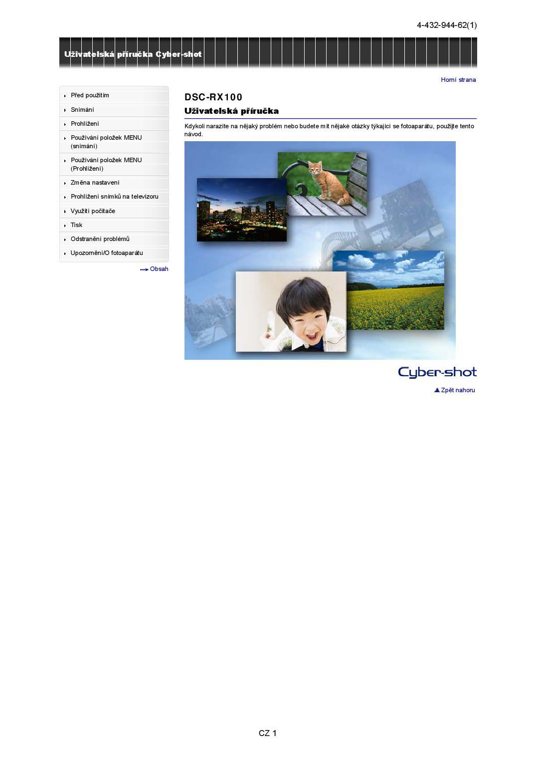 cyber shot dsc rx100 manual