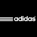 1f75e501f adidas Performance pánské zimní boty WINTER HIKER SPEED CP PL - Černé V22179    Zboží.cz